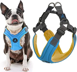 "Gooby Escape Free Memory Foam Harness, Small Chest (13-17.2""), Blue"