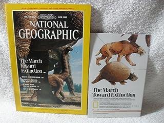 NATIONAL GEOGRAPHIC MAGAZINE JUNE 1989 DINOSAURS MALTA TIBET NOMADS MAP