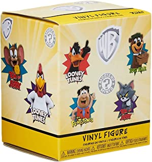 Funko Mystery Minis: Warner Brothers S1 12PC PDQ, One Random Mystery Action Figure - 26292