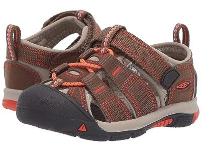 Keen Kids Newport H2 (Toddler) (Dark Earth/Spicy Orange) Kids Shoes