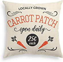 AVOIN Easter Locally Grown Carrot Patch Pillow Cover Linen Decorative Throw Pillowcase, 18 x 18 Inch Rustic Spring Seasonal Cushion Protector for Sofa Couch Home Decor
