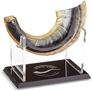 """Shofar Zion KOSHER ODORLESS NATURAL SHOFAR   Genuine Rams Horn   Smooth Mouthpiece for Easy Blowing   Made in Israel   Includes Exquisite Stand and Carrying Bag   11""""-13"""" (Shofar DD)"""