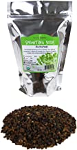 Bulk Organic Buckwheat Sprouting Seed - 1 LB - Unhulled - Organic - Gardening, Growing Salad Greens, Sprouts & Food Storage - Buck Wheat Sprout