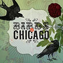 the birds of chicago