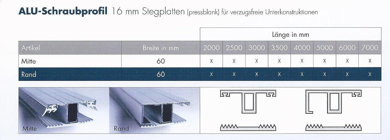 Flachprofilband Alu f/ür Doppelstegplatten 16 mm Breite 60 mm Rand Stegprofil Oberprofil mit Dichtungen und TPR Alu