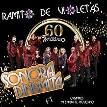 Ramito de Violetas (60 Aniversario) [En Vivo] [feat. Mi Banda el Mexicano, Casimiro]