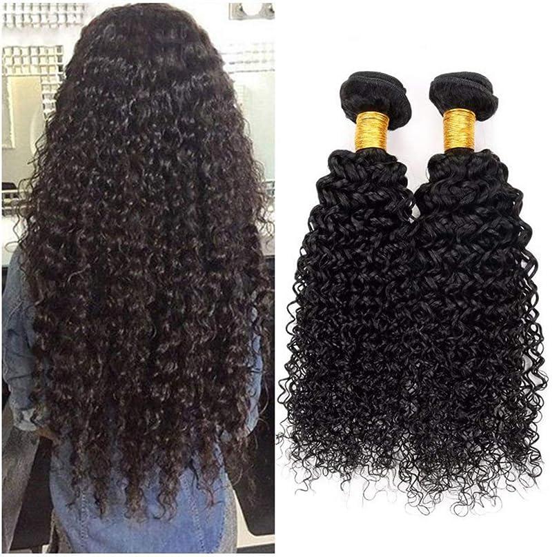 モッキンバード直感スキル女性の髪織り8Aブラジル変態カーリーヘアバンドルブラジル髪カーリー人間の髪バンドル1バンドルナチュラルカラー(100 +/- 5g)/ pc