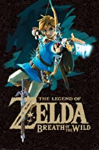 Pyramid America Legend of Zelda Breath of The Wild Link with Bow Video Game Gaming Cool Wall Decor Art Print Poster 24x36 inch