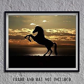 4d09139a8189e Amazon.com: black stallion: Handmade Products