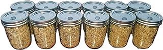 12 Jars BRF PF Tek Brown Rice Flour Mushroom Substrate - Half Pint Jars with Injectable Ports