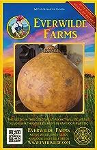 Everwilde Farms - 25 Bushel Gourd Seeds - Gold Vault Jumbo Seed Packet