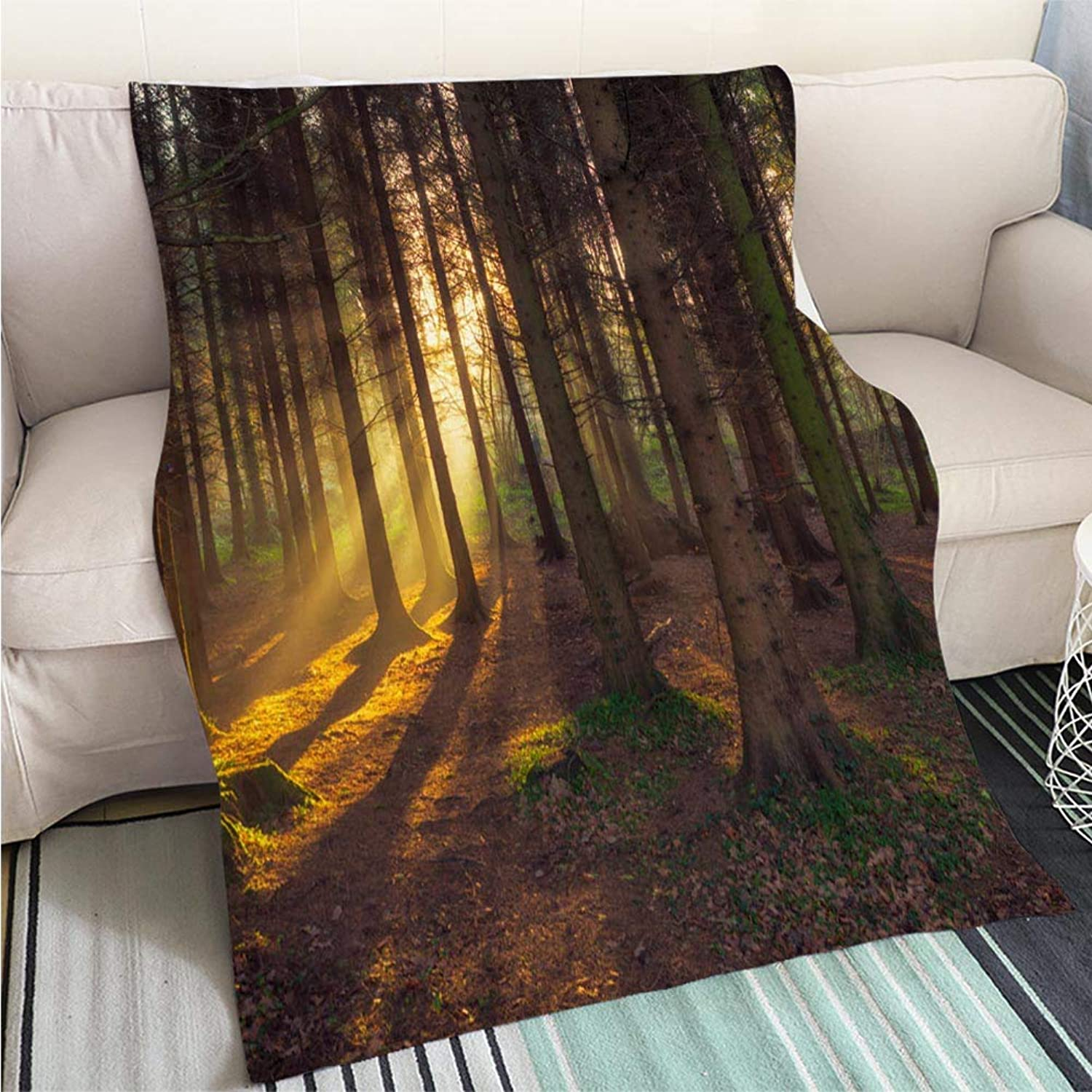 Comforter Multicolor Bed or Couch Forest Morning Sun Rising in The UK Hypoallergenic Blanket for Bed Couch Chair