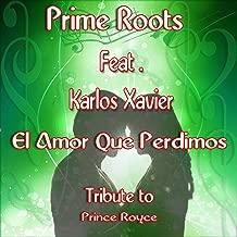 El Amor Que Perdimos (feat. Karlos Xavier) [Extended Remix Tribute to Prince Royce]