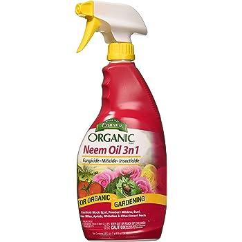 Espoma EONM24 Neem Oil, White