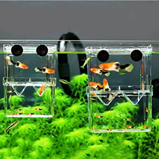 MundoPet Aquarium Breeding Hatchery Incubator Isolation Box Tank for Fish Breeder
