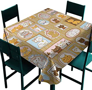 Sunnyhome Spillproof Tablecloth Cat Family Tree of A Kitty with Portraits Domestic Feline Characters Gallery Humor Design Great for Buffet Table, Parties& More 70x70 Inch Multicolor