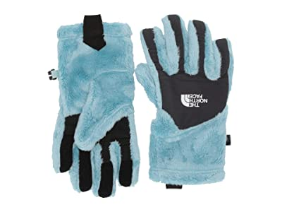 The North Face Kids Osito Etiptm Gloves (Big Kids) (Windmill Blue) Extreme Cold Weather Gloves