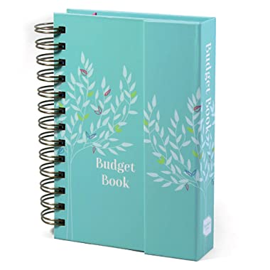 Boxclever Press Budget Book. Budget Planner with Pockets to Organize Cash Flow, Bills & More (Turquoise)