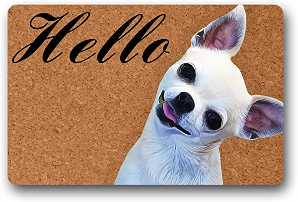 Reong Hello Chihuahua Funny Welcome Mat Durable Machine Washable Indoor Outdoor Doormat 23 6 L X 15 7 W Inch