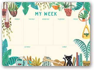 Studio Oh! Undated Weekly Desk Pad Available in 4 Designs, Justina Blakeney Holiday at Home