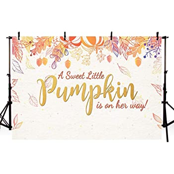 New Little Pumpkin Girl Baby Shower Photography Backdrops Props Fall Autumn Red Pink Floral Princess Baby Shower Party Decoration Gold Photo Studio Booth Background Banner 7x5ft
