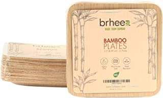"""Brheez 3.5"""" Bamboo Veneer Disposable Eco-Friendly Square Appetizer/horderves Plates - Elegant, Compostable and Biodegradable - Made from 100% Natural Bamboo - (Pack of 10)"""