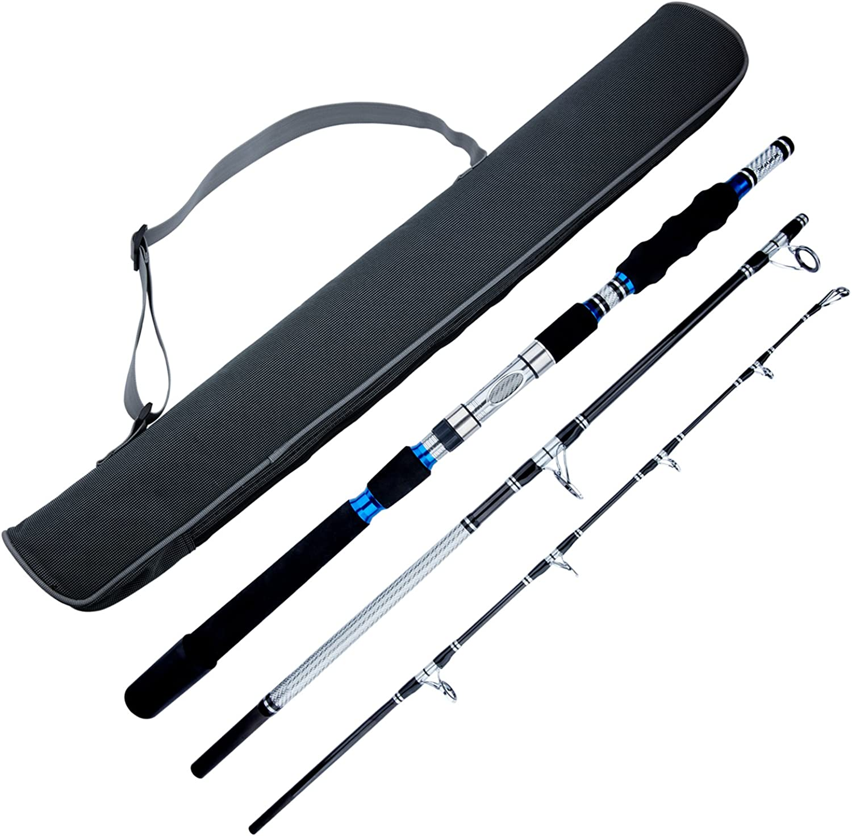 Berrypro 3Piece Spinning Rod Heavy Spinning Fishing Rod Portable Fishing Rod Graphite Spin Rod (Silver 6')