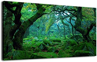 Green Forest Canvas Wall Art Living Room Decoration Big Trees Nature Picture Large Modern Canvas Artwork Contemporary Woods Mossy Rock Spring Season Prints for Kitchen Office Home Decoration 20