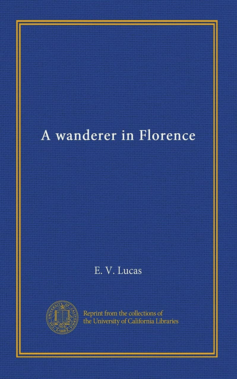 一般化する禁止する妻A wanderer in Florence
