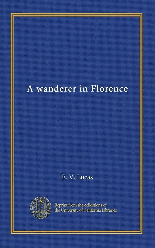 差し控える反射安全A wanderer in Florence