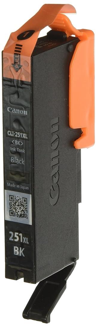 CNM6448B001-6448B001 CLI-251XL ChromaLife100 High-Yield Ink