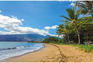 Classic Jigsaw Puzzle, 500/1000/1500/2000/3000/4000 Pieces, Hawaii Maui Beach, Children's Educational Toys Unique Gift Hom...