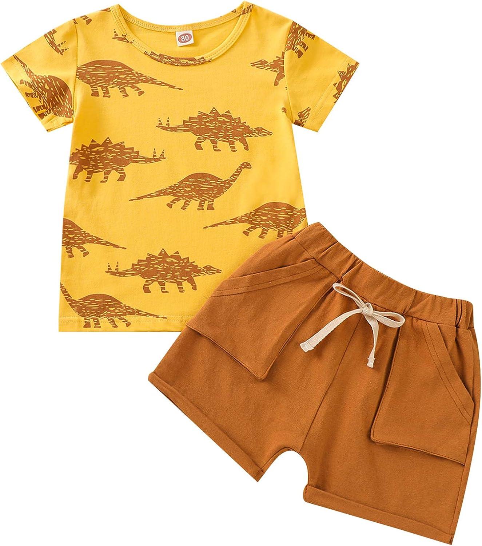 Baby Boys Infant 2Pcs Set, Summer Short Sleeve Top Dinosaur T-Shirt Solid Color Short Pants Casual Outfits
