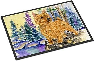 """Caroline's Treasures SS8011MAT Norwich Terrier Indoor Outdoor Doormat, 18"""" x 27"""", Multicolor"""
