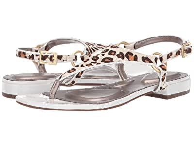 Rockport Total Motion Zosia Thong (White Leopard) Women