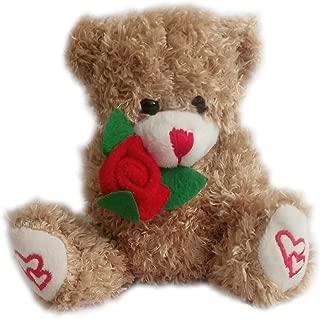 Best teddy bear holding roses Reviews