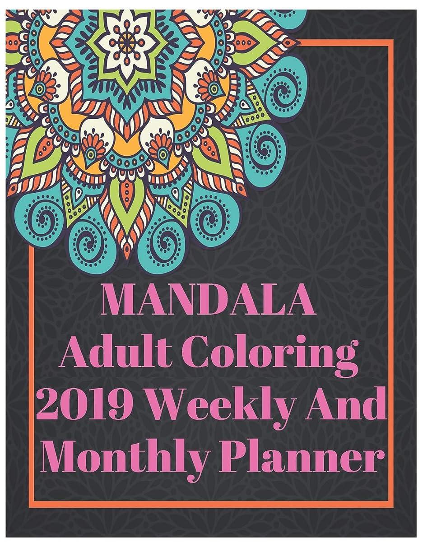 大騒ぎ同情職業Mandala Adult Coloring 2019 Weekly And Monthly Planner