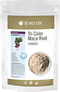 The Maca Team Premium Gelatinized Maca Powder, Potent, Premium Maca Powder, Fair Trade, GMO-Free, 8 Ounces, 25 Servings