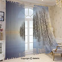 Extra Wide Chiffon Sheer Curtains Panels Trees on Top of the Frozen Lake in the Winter Scenic Forces of Nature Art Print Privacy Protect for Large Window/Sliding Glass Door/Patio Door,Blue Brown