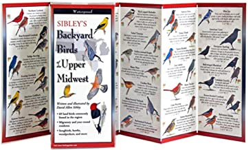 Sibley's Backyard Birds of the Upper Midwest