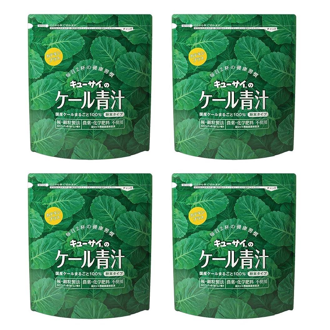 固体サークルラバキューサイ青汁カテキンプラス420g(粉末タイプ)4袋まとめ買い【1袋420g(約1カ月分)】