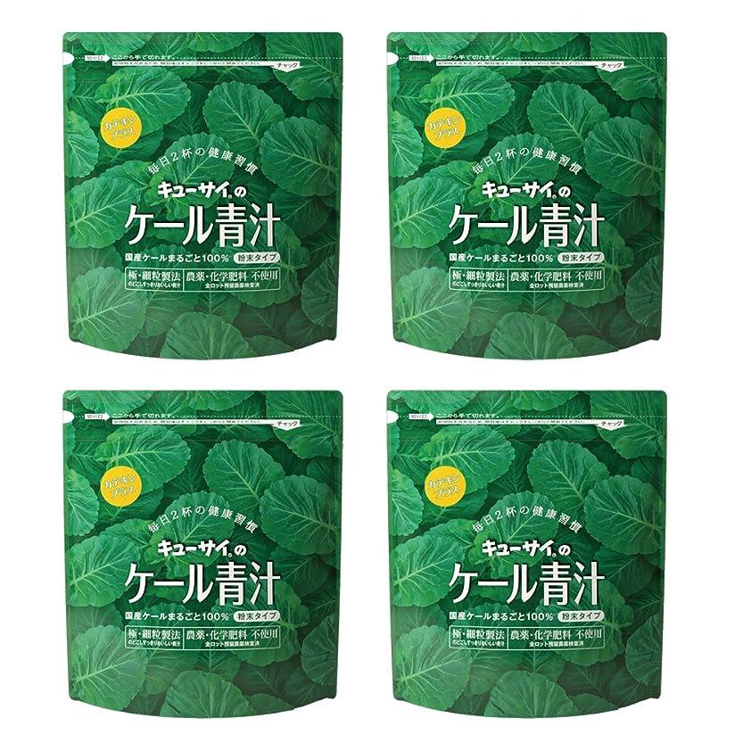 中絶人柄急いでキューサイ青汁カテキンプラス420g(粉末タイプ)4袋まとめ買い【1袋420g(約1カ月分)】