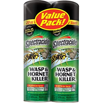 Spectracide Wasp and Hornet Killer Aerosol, 20-Ounce, 2-Pack