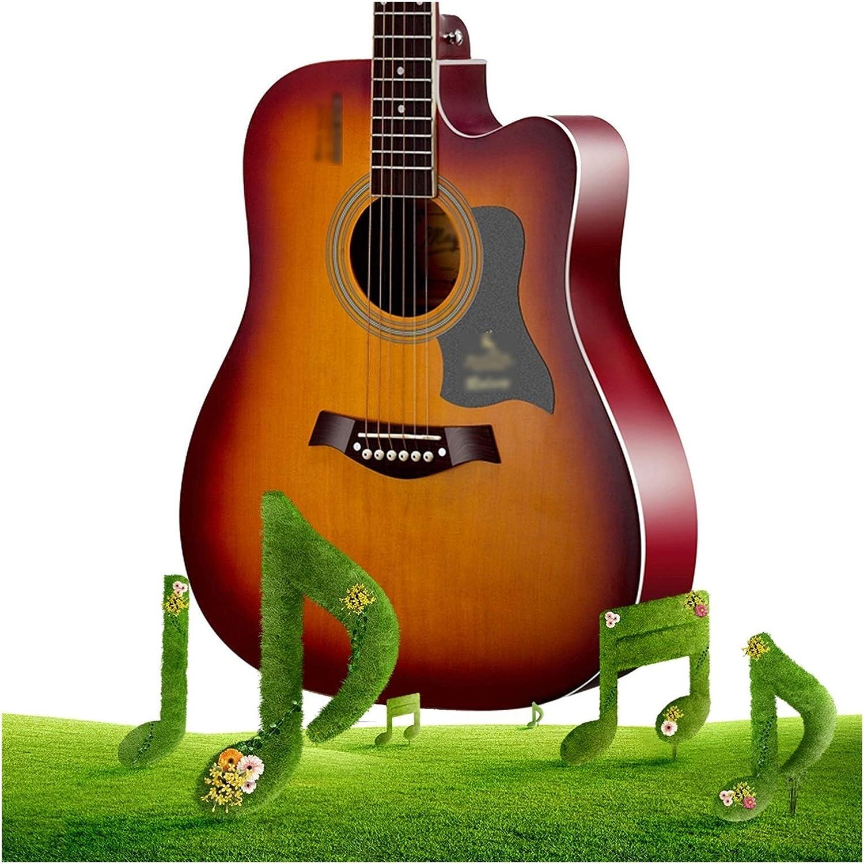 YYFANG Tamaño Completo Guitarra Acústica Clásica 6 Cuerdas De Acero Madera Contrachapada Acorazado Panel De Abeto Cuerdas Revestidas Kit De Inicio para Niños Y Adultos Mano Derecha (Natural)