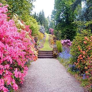 EdCott 8 x 8 ft hermosa flores de primavera fotografía jardín paisaje de fondo Outdoor Vintage Park Manor paisaje boda foto Studio accesorios mujer Lady Girl artista retrato