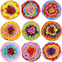 SUPLA 9 Pcs Fiesta Paper Flowers Pom Poms Flowers Tissue Pom Poms Fiesta Flower Tissue Centerpieces 15.4