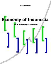 Economy of Indonesia (Economy in countries Book 112)