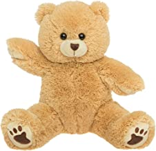 Best the bear factory Reviews