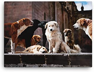 Dog Art Photo Gifts For Dog Lovers, Poster Canvas Prints Various Sizes, Dog Art Wall Decor, Mutt Dog Gifts For Dog Lover, ...