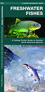 Freshwater Fishes: A Folding Pocket Guide to Familiar North American Species (Wildlife and Nature Identification) (Arabic Edition)